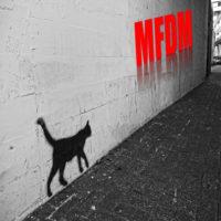 3 MFDM